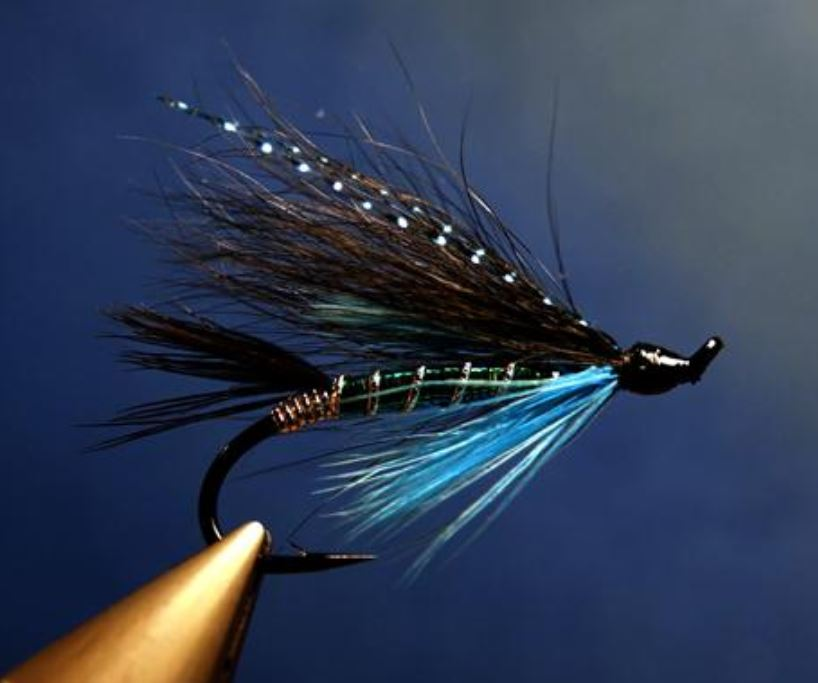 Black & Blue mouche fly tying saumon salmon eclosion Modèle Seagull29