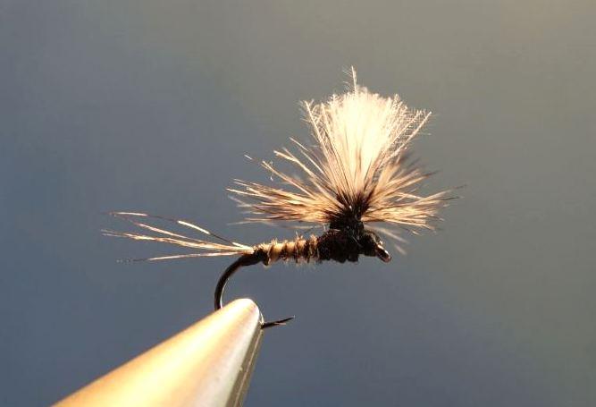 ephemere noire parachute heron corneille fly tying mouche eclosionephemere noire parachutte heron corneille fly tying mouche eclosion