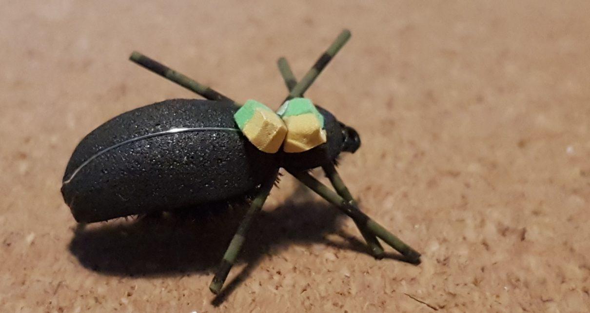 terrestre terrestrial scarabée beetle mouche fly tying eclosion