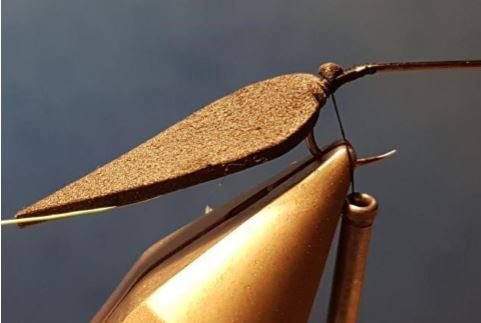 terrestre terrestrial scarabé beetle mouche fly tying eclosion