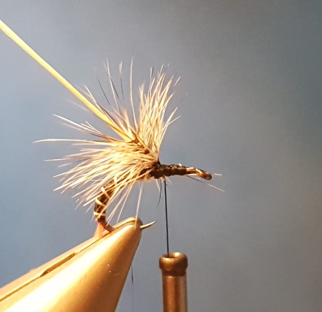 Chiro chironome paraloop hackle ùouche fly tying reservoir eclosion