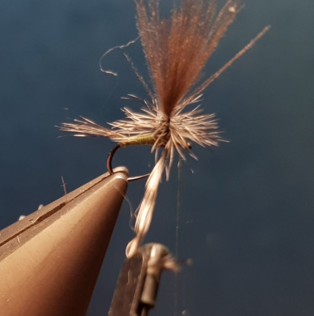 Ignita olive parachute mouche fly tying eclosion