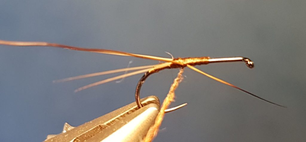 Brune de mars march brown CDC dubbing moose mane elan fly tying eclosion mouche