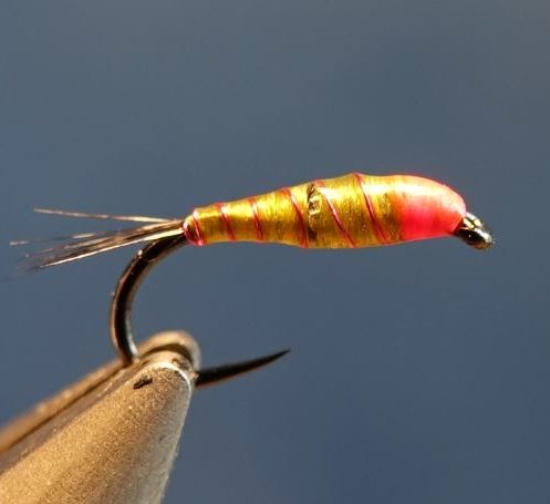 Nymphe facile mouche fly tying eclosion