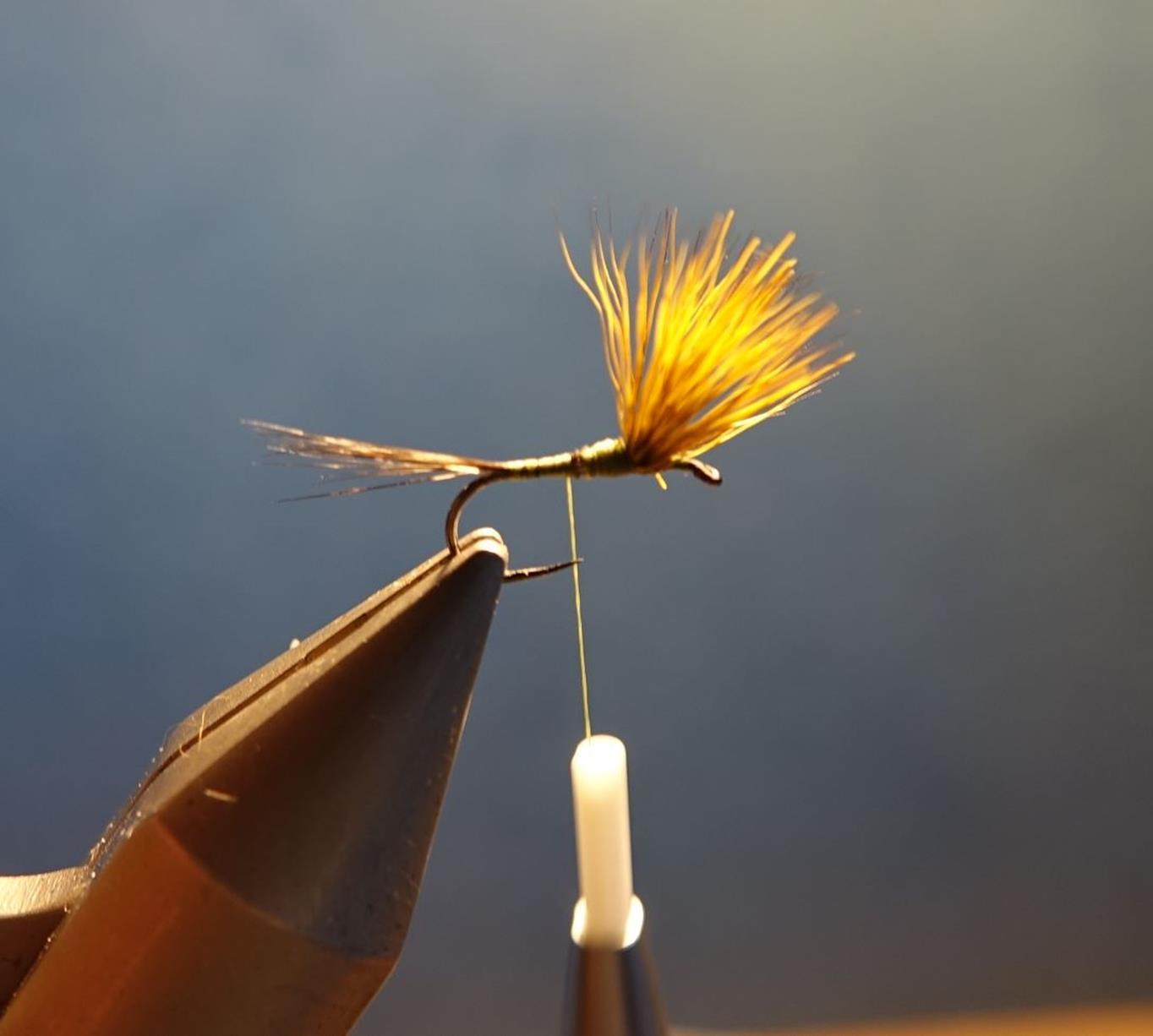 Comparadum poil cervidé olive fly tying mouche eclosion