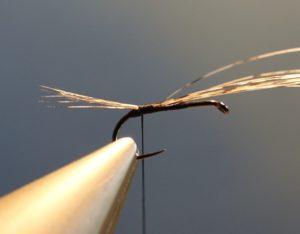 ephemere noire parachute heron corneille fly tying mouche eclosion