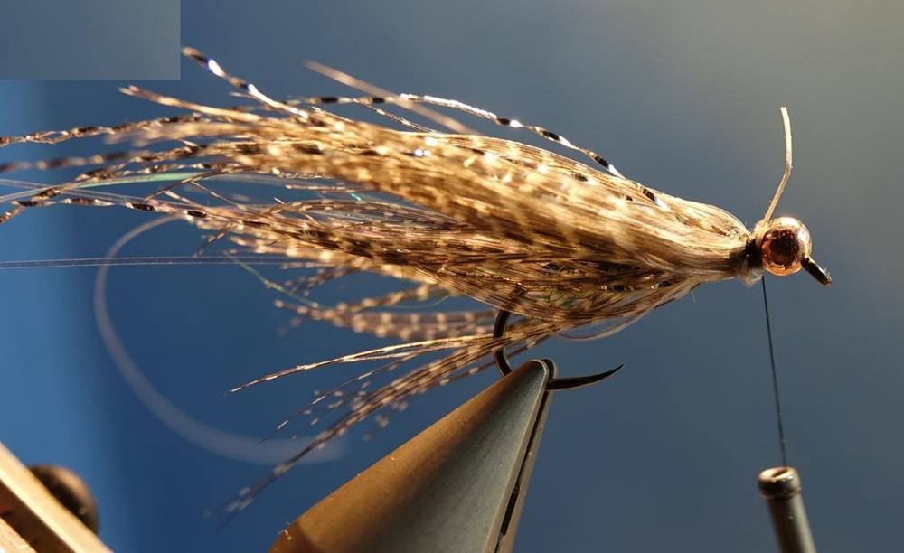 Streamer vairon flashabou rainbow mouche mallard fly tying eclosion
