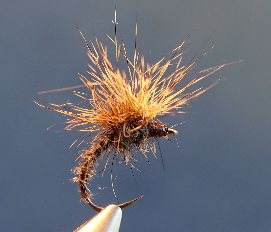 emergente ecureuil paraloop squirrel fly tying mouche eclosion