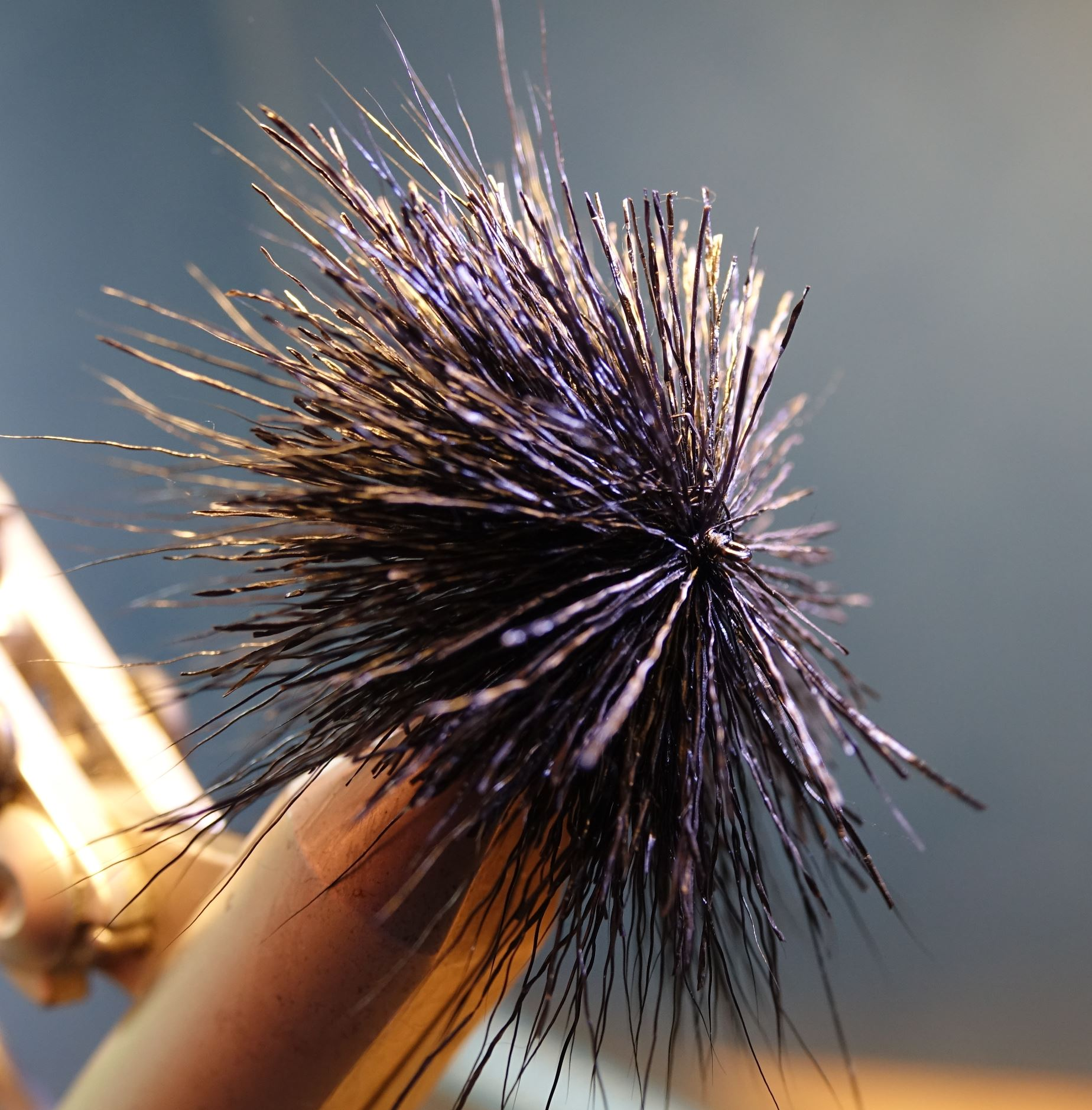 Black snail mouche fly tying reservoir eclosion 1