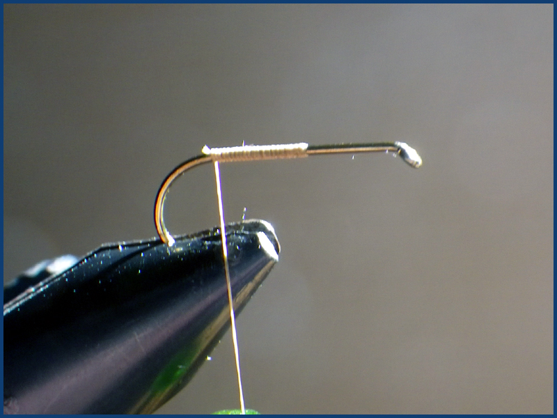 March brown MB pardo paraloop mouche fly tying eclosion 2