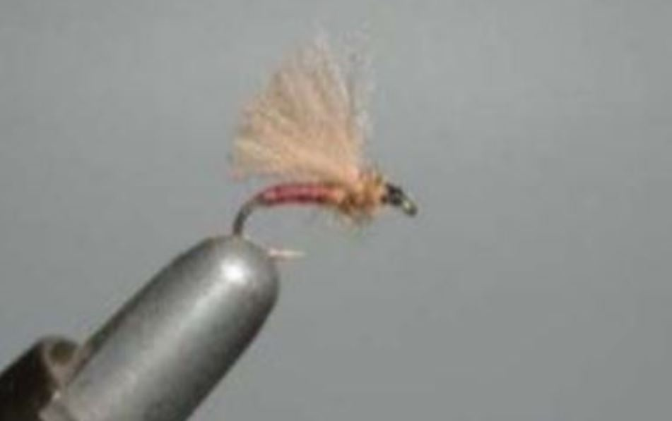 voilier CDC mouche fly tying eclosion Lanceur59