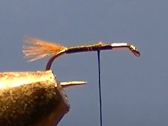 Emergente CDC mouche fly tying eclosion