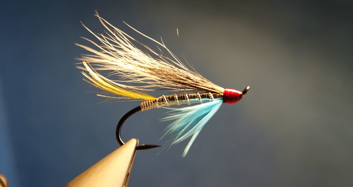 Silver blue hairwing mouche fly saumon salmon squirrel ecureuil eclosion
