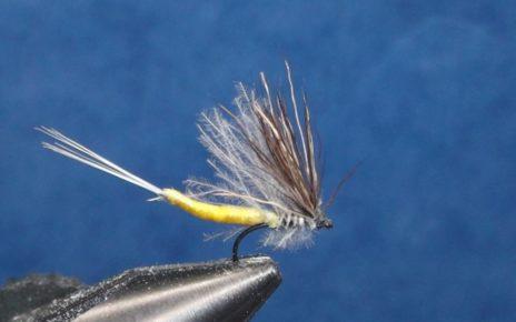 corps détaché éphémère mouche fly tying eclosion