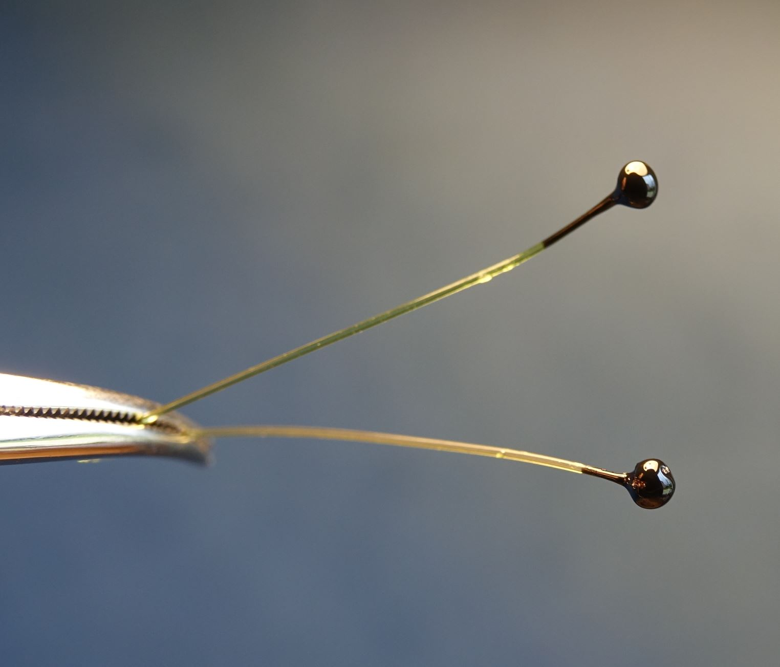 Ecrevisse craw crayfish fly tying mouche eclosion oeil eye