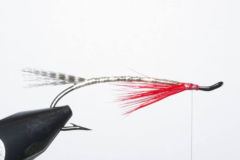 Magog smelt mouche fly salmon saumon flytying eclosion