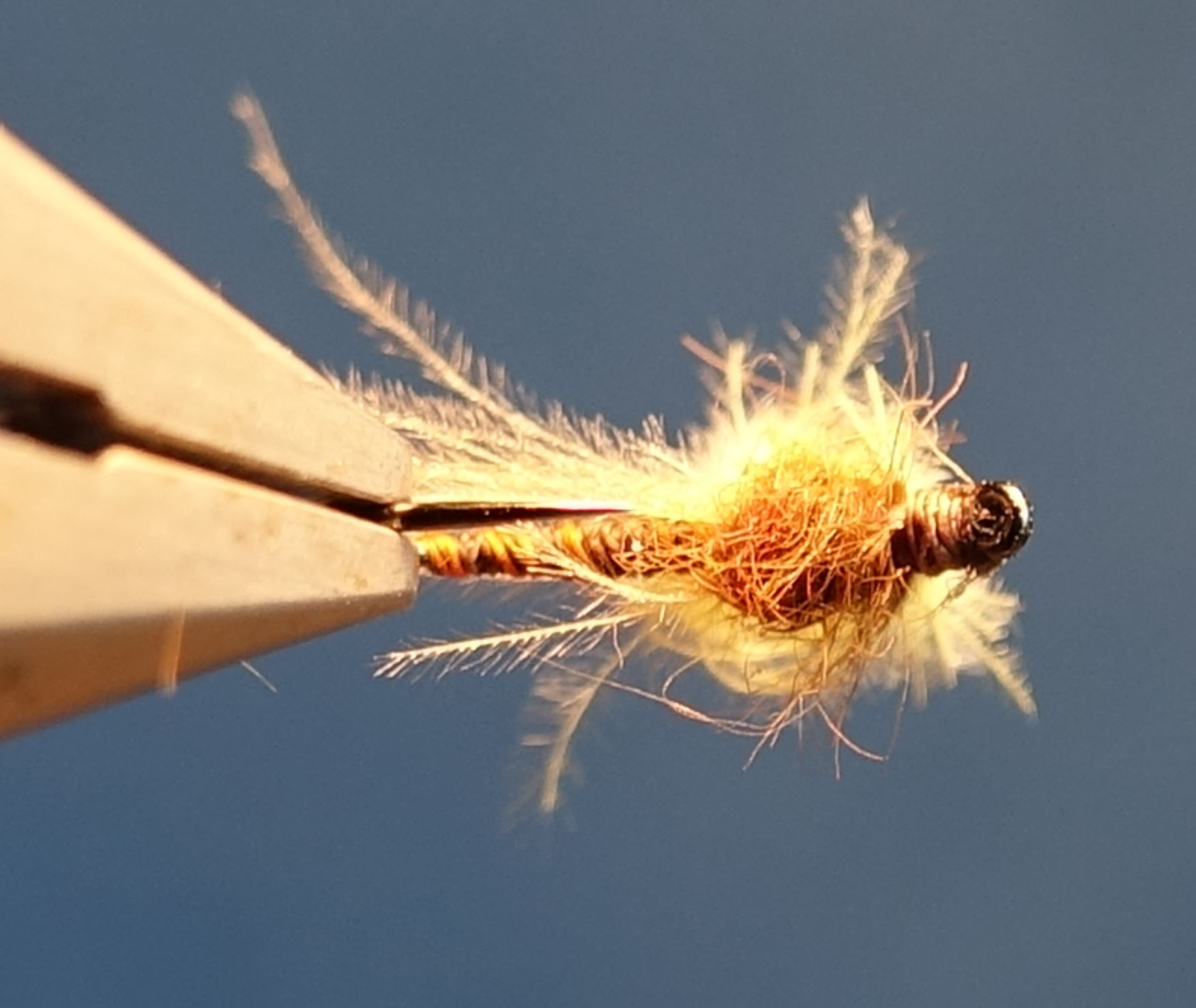Sulfure emergente fly tying mouche eclosion