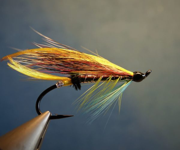 Beltra badger fly mouche salmon saumon fly tying eclosion