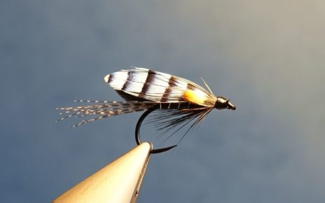 Colonel Downman mouche fly sea-trout salmon saumon TDM truite de mer fly tying eclosion