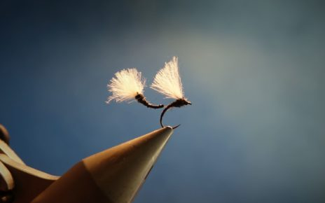 Chiro chironome chironomid tandem twin mouche fly flytying eclosion