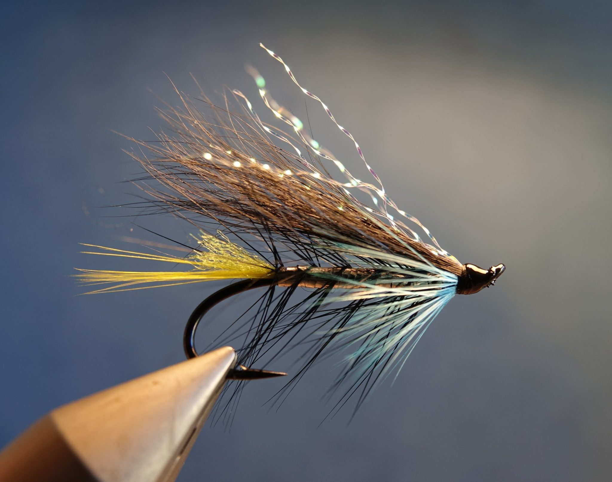 Mouche fly salmon saumon classique squirrel 6kg flytying eclosion