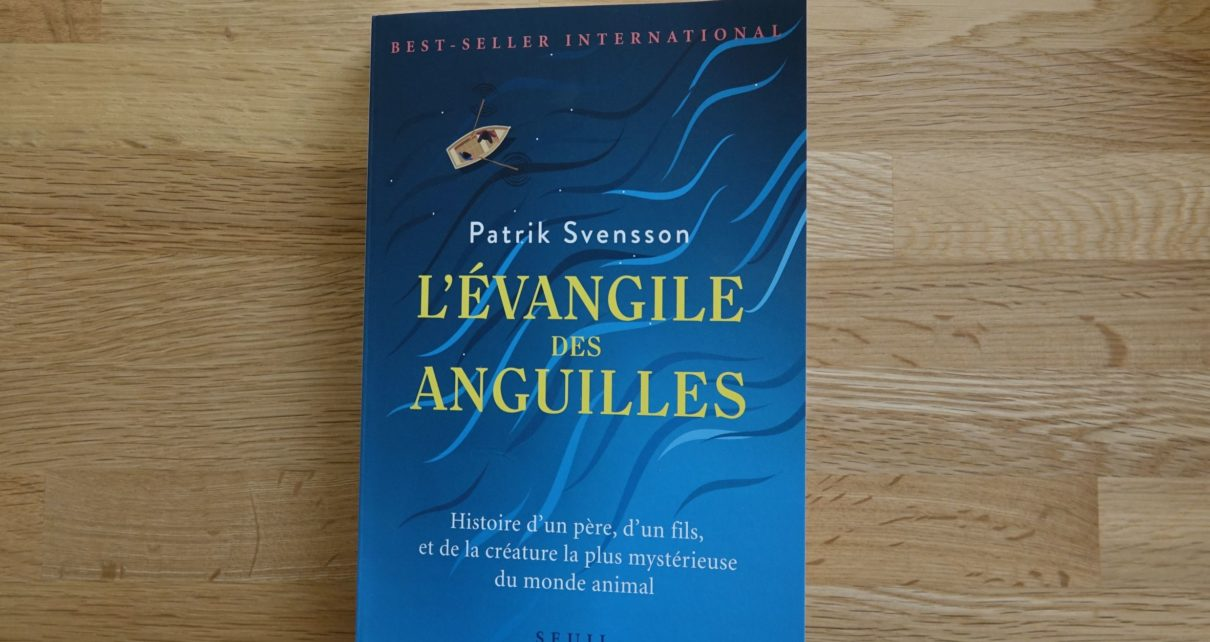 evangille des anguilles livre book patrick Svensson eclosion