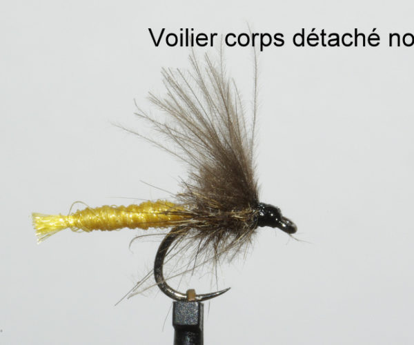 eclosion peche à la mouche fly flytying tying rodbuilding
