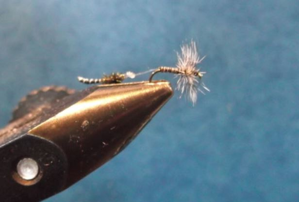 Chiro tandem chironomid twin chironome fly tying mouche eclosion