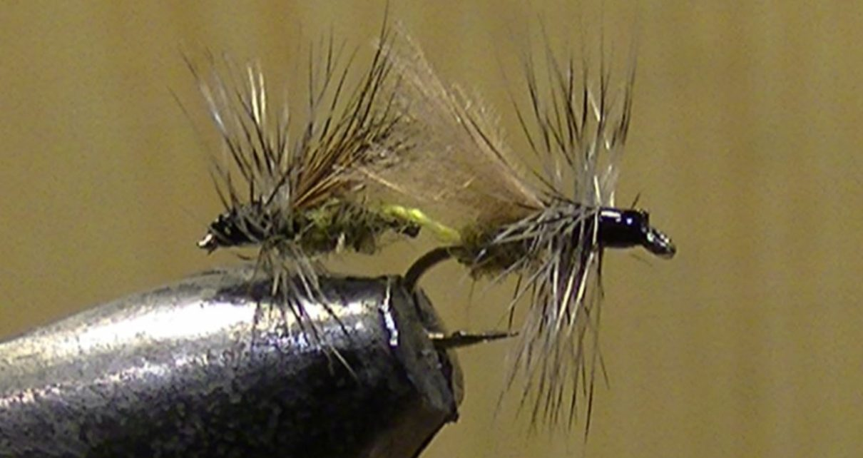 chironome chiro chironomid tandem twin mouche fly tying flytying eclosion