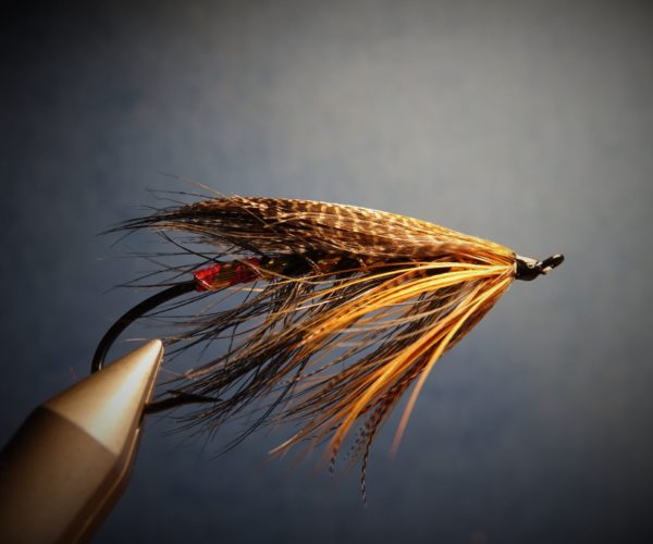 Spey hackle fly mouche flytying tying feather plume pheasant faisan malladr duck oie gooz=se swan cygne eclosion