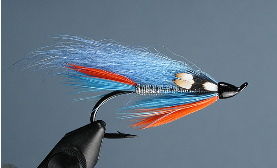 eclosion artic runner fly flytying tying mouche migrateutr salmon ausmon sea trout truite mer