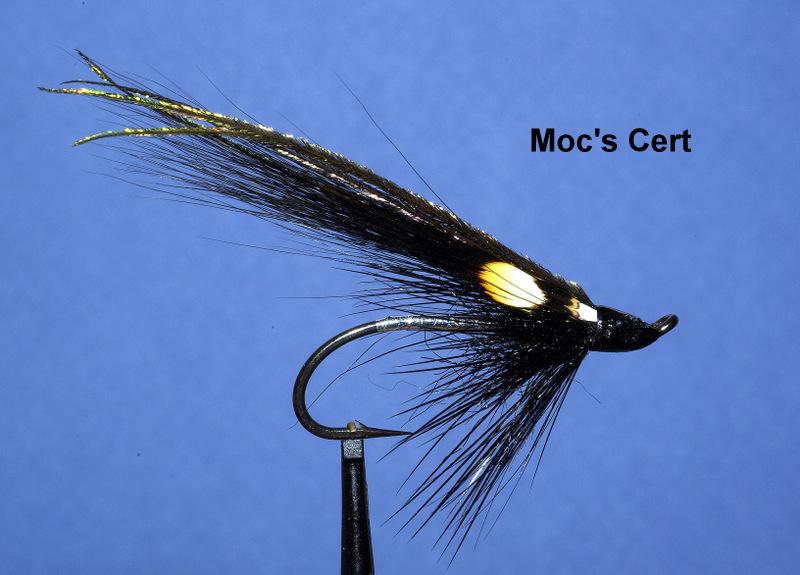 Moc's cert mouche fly flytying tying TDM seatrout eclosion mise en avant