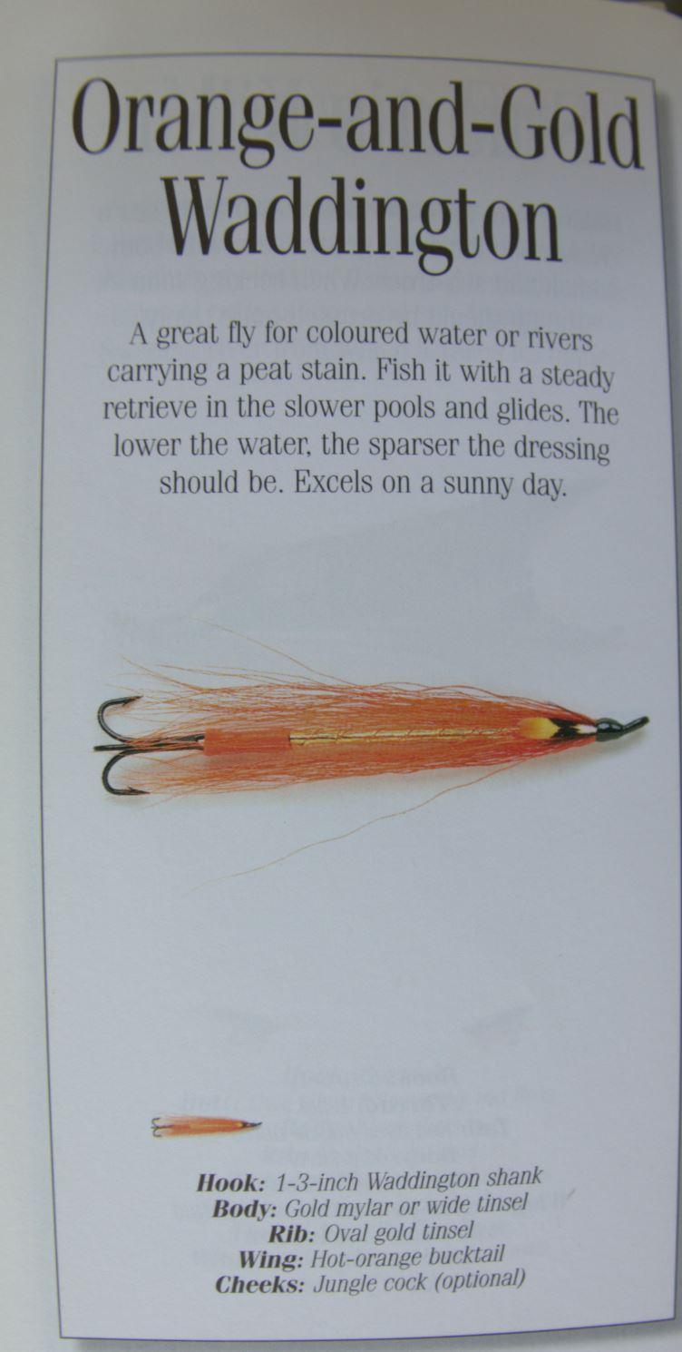 orange gold waddington bucktail streamer poil fur flytying fly tying mouche streamer eclosion