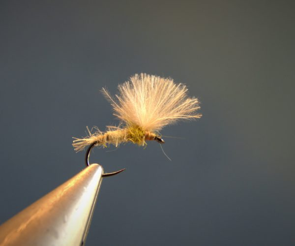 ATE sulfure olive CDC dubbing hare lievre fly mouche tying flytying eclosion