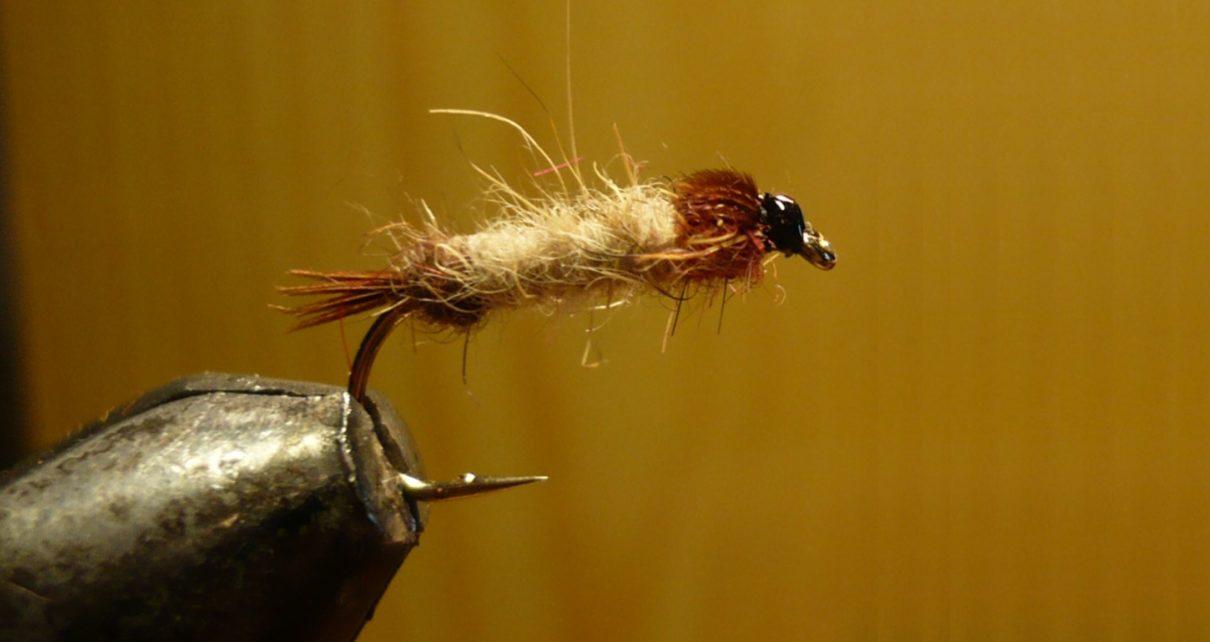 MDM mai nymphe flytying tying fly eclosion ABFly