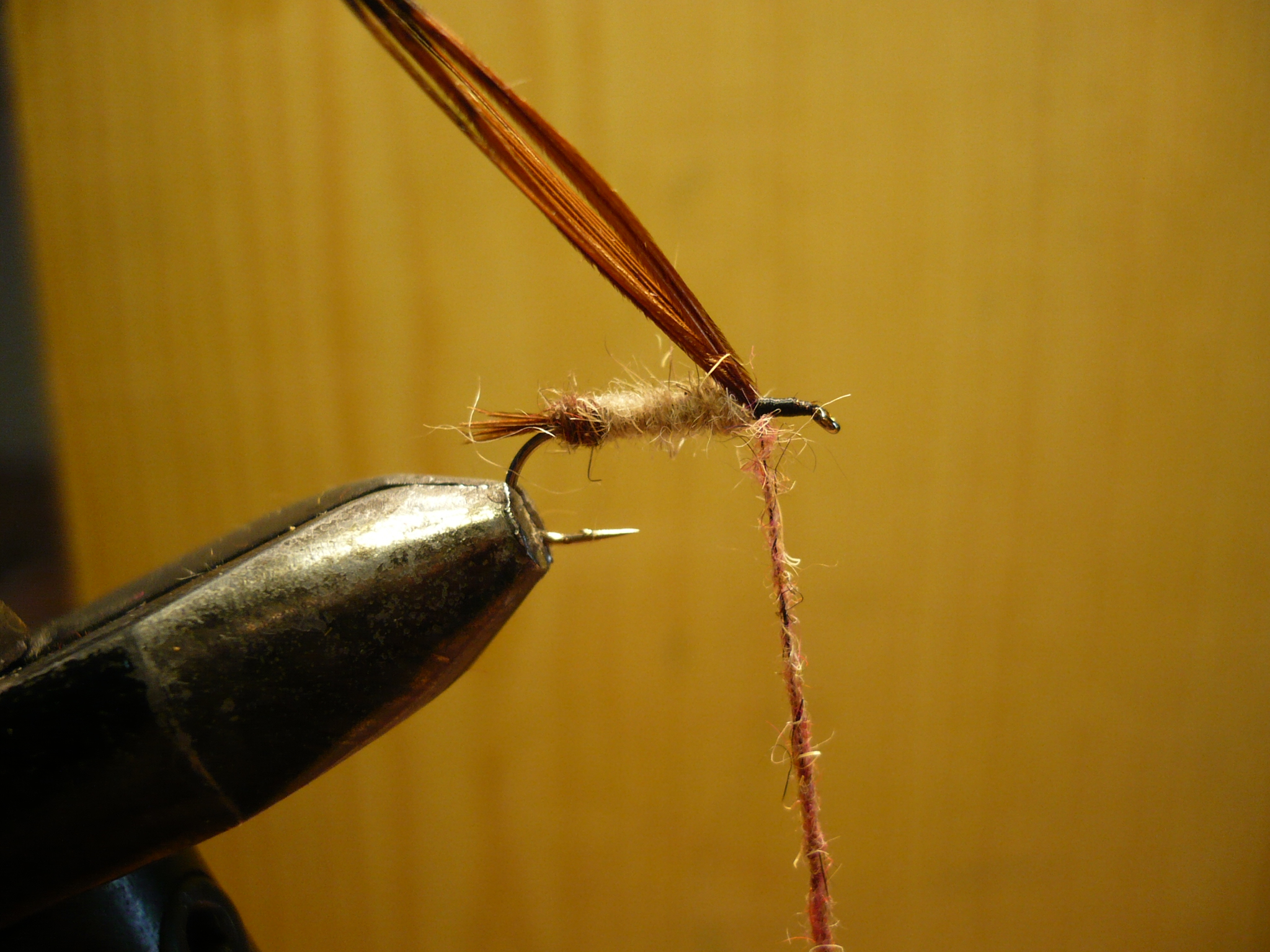 MDM mouche de may nymphe flytying tying fly eclosion