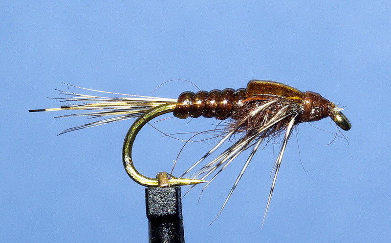 ANR absolute no refuse nymphe nymph mouche fly flytying tying eclosion