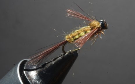 ANR flenette nymphe nymph fly tying flying eclosion